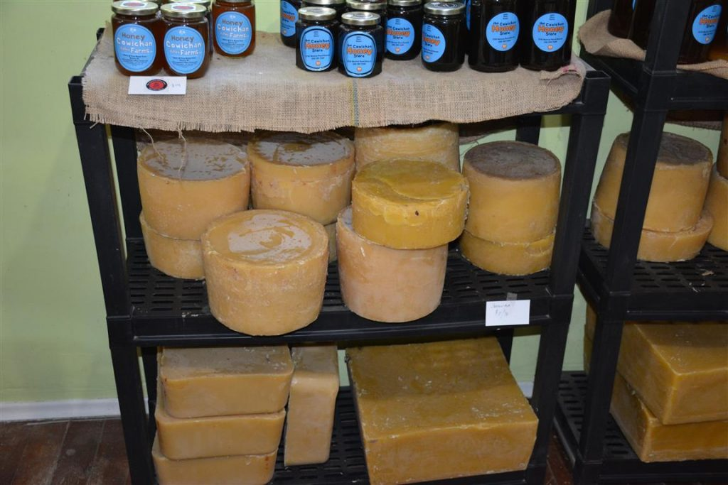 beeswax for candle making, crafts, and more